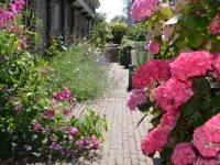 bed-and-breakfast-bloemenhoeve